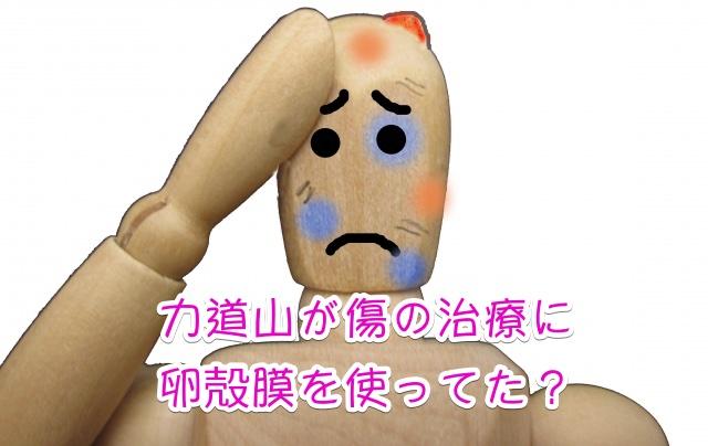 卵殻膜 傷