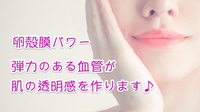 卵殻膜化粧品 効果